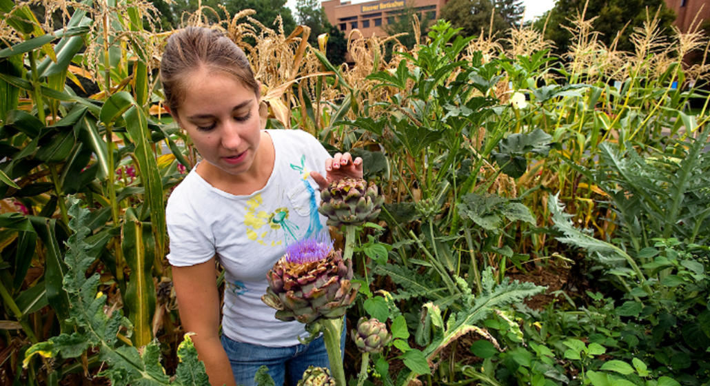 How does CFANS educate tomorrow's food and ag workforce?